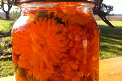 Calendula DeLight – Inner Space Alchemisten Körperöl –