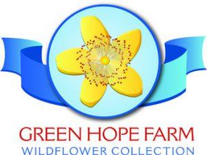 Wildflowers Green Hope Farm
