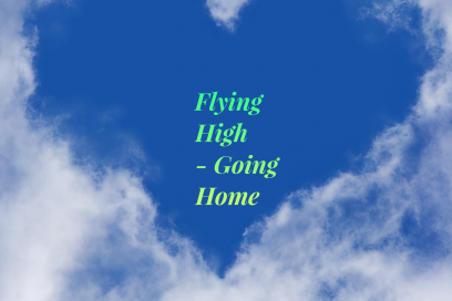 Flying High – Going Home – Die Transition Essenzen Kombination –