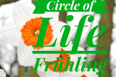 Circle of Life – eine Yin Yoga Reise durch die Jahreszeiten – Der Frühling –