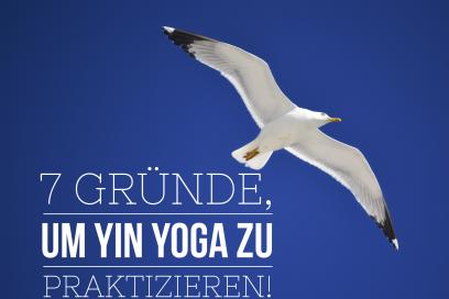 7 Gründe, um Yin Yoga zu praktizieren!