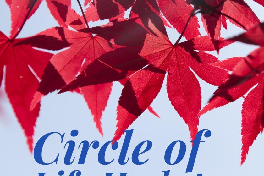 Circle of Life – eine Yin Yoga Reise durch die Jahreszeiten – Der Herbst