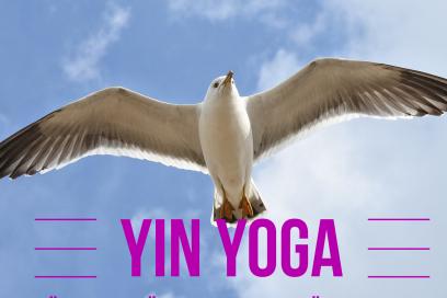Yin Yoga & ätherisches Öl, Immun-Booster für den Herbst