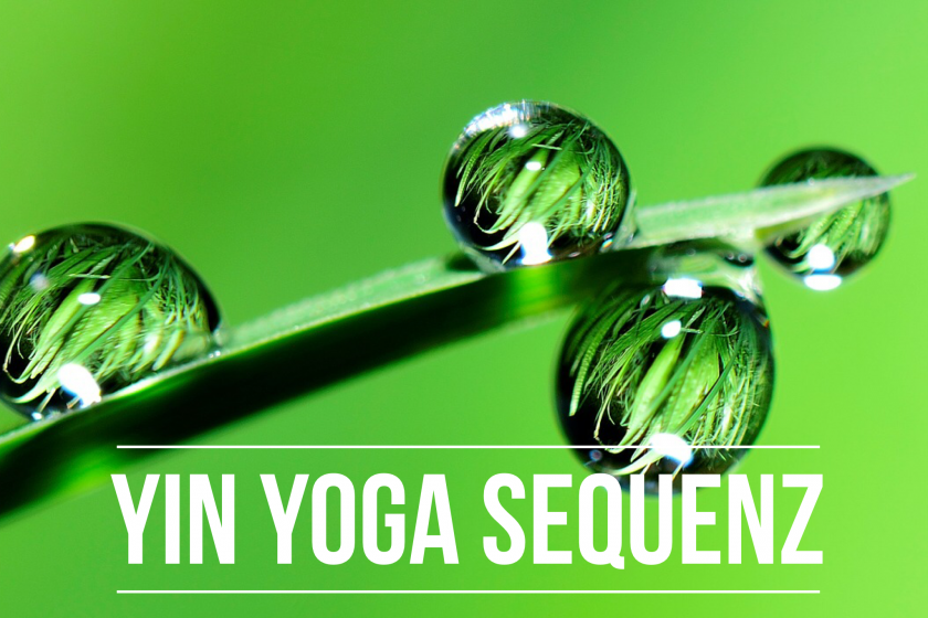 Yin Yoga Let's Twist again – Die Energie fließen lassen