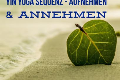 Yin Yoga Sequenz – Aufnehmen und Annehmen