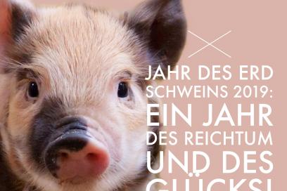 Herzlich willkommen im Jahr des Erd-Schweins
