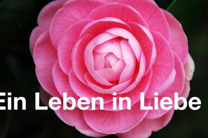 Geschützt: Ein Leben in Liebe  – Blütenessenzen Onlinekurs