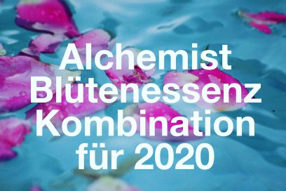 Blütenkombination Alchemist 2020