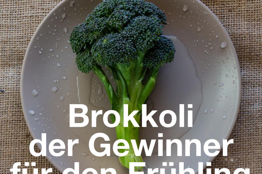 Brokkoli, der Gewinner für den Frühling – Nähre dein Holz, deine Erde und dein Metall