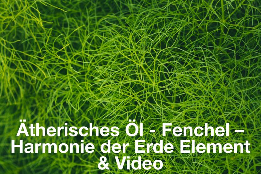 Ätherisches Öl – Fenchel – Harmonie des Erde Element mit Video