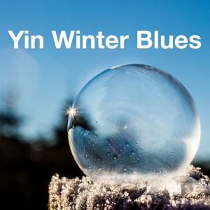 yinyoga winter / yin yoga poses for winter  the